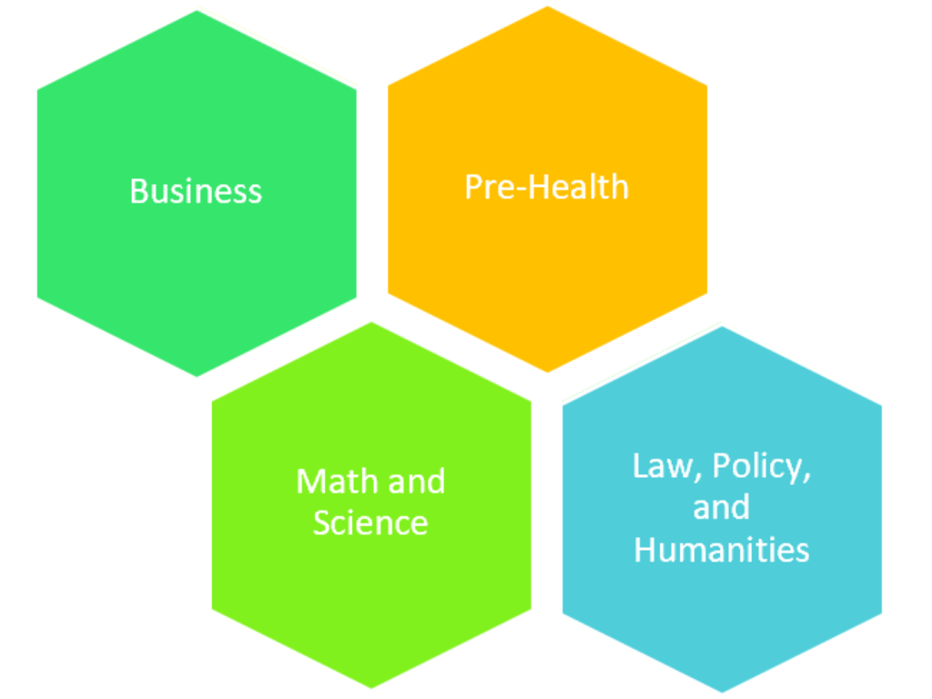 Graphic representing the different areas a council might be focused on. The examples include: Business, Pre-Health, Math and Science, and Law, Policy, and Humanities.